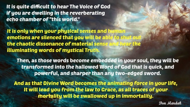 it-is-quite-difficult-to-hear-the-voice-of-god-if-you-are-dwelling-in-the-reverberating-echo-chamber